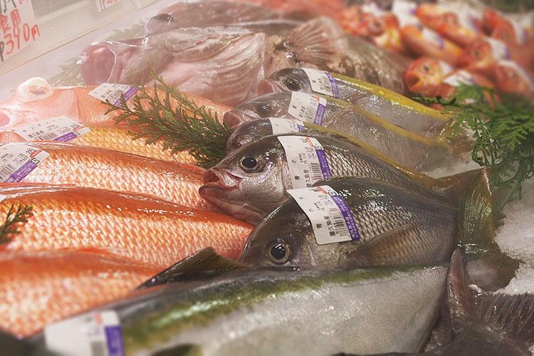 丸高水産は屋久島の地魚にこだわります