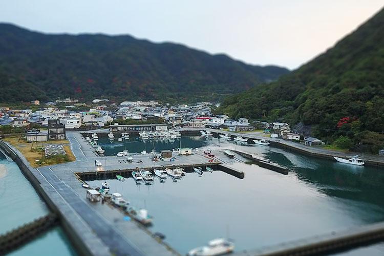 首折れサバの発祥。屋久島の一湊漁港
