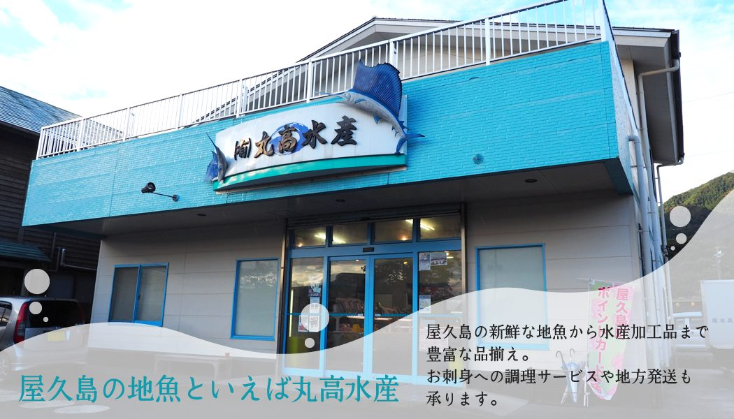 屋久島の地魚といえば丸高水産